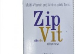 intas ZIP VIT Multi- vitamin and amino acids Tonic , advance nutrition for good health complete growth for vitamin , calcium , energy , minerals , nutrition Pet Health Supplements(200 ml)